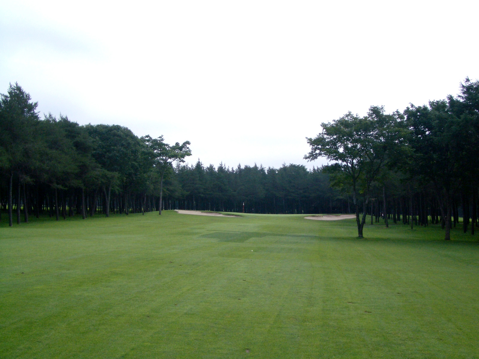 classics coursework The classic course has many colourful flourishes an island green on #17 draws inspiration from tpc sawgrass and is the site of many dramatic finishes over the final holes back to back 600+ yard holes at #13 and #14 demand long and accurate shot making.